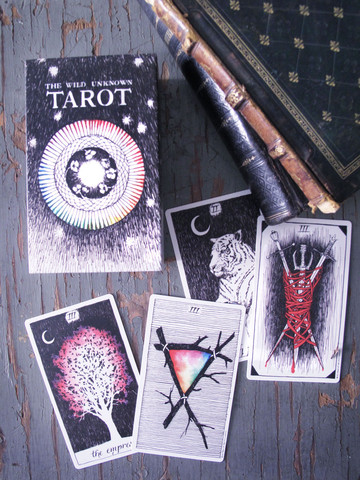 Wild_unknown_tarot_4_large